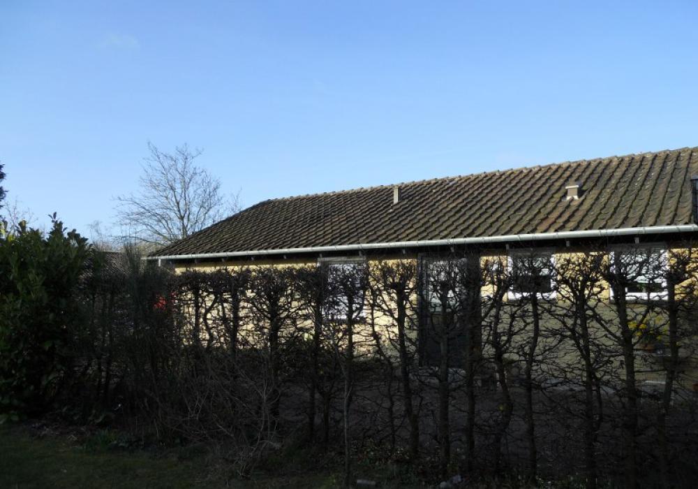 hæk ved gult murstenshus